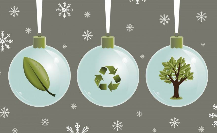 How to Have a Eco Friendly & Green Holiday