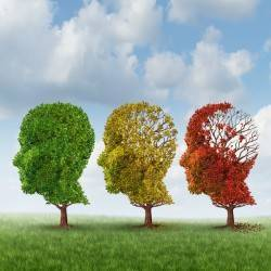 Brain Aging Due to Dementia